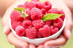 Raspberry Ketone fat burning