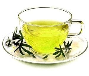Green tea and fat burning