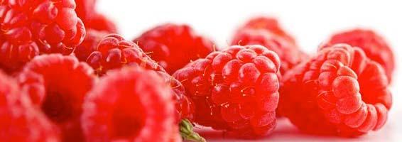 benefits of raspberry ketone