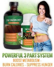 Yacon Diet System