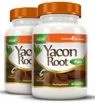 Buy Yacon Root Pure capsules from Evolution Slimming